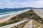 Isthmus of Bruny Island, Tasmania, Australia