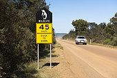 Signalisation routière indiquant la présence de manchot, Bruny island, Tasmanie, Australie