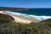 Neck Game reserve, Bruny Island, Tasmania, Australia