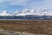 Delta River along the Richardson Highway during spring thaw, in the background the Alaska Range, left Mount Deborah (12336 ft, right Haynes Mountain (13740 ft)