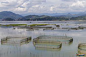 Cages with nets for raising fish in open sea, Fish Farming, Xiapu County, Fujiang Province, China