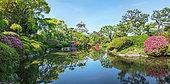 Garden of osaka castle under ans azalea in full blum, Japan
