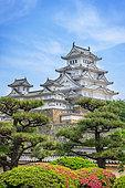 Himeji's castle under azalea in full blum, Japan