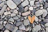 Heart-shaped stone, Antarctica