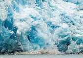 Velvet of the Eternity Glacier and seabirds, Greenland