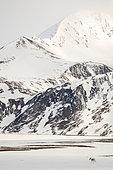 Svalbard reindeer (Rangifer tarandus platyrhynchus) evolving in a landscape of Spitsbergen mountains