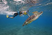 Woman and little boy with mask and fins swim with Green Sea Turtle (Chelonia mydas) under surface of the blue water, Red Sea, Abu Dabab, Marsa Alam, Egypt, Africa