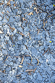 Slate mulch in a plantbed