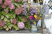 Autumn bouquet sitting on a garden bench, Pas de Calais, France
