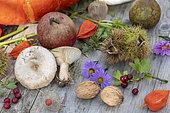Autumn table in a garden, Pas de Calais, France