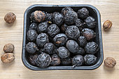 Harvest of walnuts affected by walnut blight