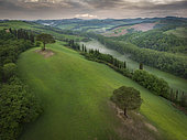 Two trees on the top of the hill, Buonconvento, Siena, Tuscany, Italy