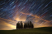 Startrail above Cypress trees in Val d'Orcia, San Quirico d'Orcia, Siena, Tuscany, Italy