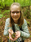 Young girl discovers a spotted salamander in Queen's Forest, Lorraine, France