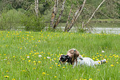 Young girl during a macro photo shoot in a meadow in the Queen Forest, Lorraine, France