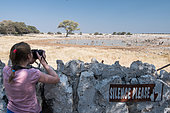 Young girl photographing wildlife at the waterhole safely behind a low stone wall. Okaukuejo Camp, Etohsa, Namibia.