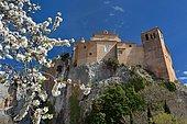 Almond blossom and collegiate Alquezar, Aragon, Spain