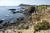 Landscape of the Var coast in summer, View of the island of Gaou and Embiez to Six Fours beaches, Var, France