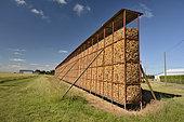 Corn drying, Beauce, Center-Val de Loire, France