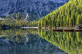 Miroir sur le lac de Braies, dans le massif des Dolomites. Célèbre lac au cadre grandiose, spot du tourisme dans le haut Adige au pied du Massif des Dolomites (Parc naturel de Fanes-Sennes-Braies.) - Italie (Sud-Tyrol)