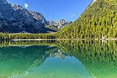 Miroir sur le lac de Braies, dans le massif des Dolomites, célèbre lac au cadre grandiose, spot du tourisme dans le haut Adige au pied du Massif des Dolomites, Parc naturel de Fanes-Sennes-Braies, Tyrol, Italie