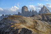 Cadini de Misurina and Monte Campedelle, Massif des Dolomi, Striated soils on the slopes of Campedele, seen from the foot of Tre Cime de Lavaredo, Natural Park of Tre Cime, Massif des Dolomites, Tyrol, Italy