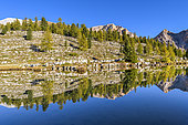 """Mirror on the Green Lake in the Dolomites, Amphitheater strata nicknamed the """"Parliament Marmot"""", Val di Fanes, Natural Park Fanes-Sennes-Braies, Dolomites, Tyrol, Italy"""
