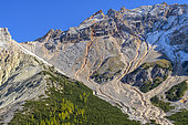 Subalpine landscape of the Val de Fanes in the Dolomites, vivid scree, prostrate mugo pines and larches: a typical Dolomite landscape, Val di Fanes, Fanes-Sennes-Braies Nature Park, Dolomites, Tyrol, Italy