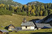 Hamlet of Fodara Vedla, Alpe de Sennes, in the Dolomites, hamlet perched in the Alpe of Sennes, Natural Park of Fanes-Sennes-Braies, Massif des Dolomites, Tyrol, Italy