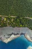Tara Pacific expedition - november 2017 Kimbe Bay, palm oil plantation and nearby coral reef, affected by bleaching, Papua New Guinea, H: 552,4 m. mandatory credit line: Photo: Christoph Gerigk, drone pilot: Guillaume Bourdin - Tara Expeditions Foundation
