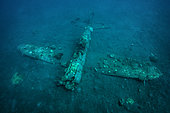 Tara Pacific expedition - november 2017 Kimbe Bay, Papua New, Guinea, Zero, Japanese WW2 fighter plane wreck. D: 15 m, The Zero wreck was discovered in January 2000 by local William Nuli while he was freediving for sea cucumbers. He asked the Walindi Plantation Resort dive team if they might know what it was, and when they investigated they uncovered the intact wreck of a Zero fighter, resting on a sedimented bottom in 15 m depth. This World War II Japanese fighter is almost completely intact. The plane is believed to have been ditched, the pilot is believed to have survived, but was never found on the island. He never returned home. Maybe he disappeared in the jungle… On 26th December 1943, during the battle of Cape Gloucester, the Japanese pilot made an emergency landing, ditching his Mitsubishi A6M Zero plane into the sea approximately 100m off West New Britain Province. The plane was piloted by PO1 Tomiharu Honda of the 204st Kōkūtai. His fate is unknown but it is believed the he made a controlled water landing after running out of fuel and survived. Although he failed to return to his unit, the plane was found with the throttle and trim controls both set for landing and the canopy was open. There are no visible bullet holes or other shrapnel damage and the plane is still virtually intact after over 70 years underwater. It is a A6M2 Model 21 Zero, made famous for its use in Kamikaze attacks by the Japanese Imperial Navy. The wreck has the Manufacture Number 8224 and was built by Nakajima in late August 1942.