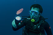 Tara Oceans Expeditions - May 2011. Daniel Cron, first mate and chief engineer of Tara with Nude Ctenophore, Galapagos