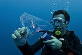 Tara Oceans Expeditions - May 2011. Daniel Cron, first mate and chief engineer of Tara, sampling plancton for o/b scientists, Galapagos