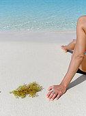 Algues sargasses échouées sur une plage à Sainte Anne aux côtés d'une touriste, Véritable fléau pour le tourisme dans les Antilles, Guadeloupe, Antilles françaises
