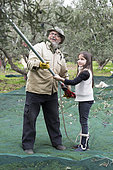 Alessandra, 7, learns to use an electric comb with Nikos for olive harvesting, Kritsa, Crete, Greece