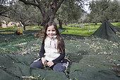 Alessandra, 7, picks olives in Kritsa, Crete, Greece
