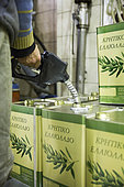 Man filling cans with unfiltered 17-liter olive oil for farmers, olive oil factory of Kritsa, Crete, Greece