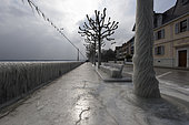 Ice at the edge of Lake Geneva during the episode of bise 27 February 2018. In late winter, the stormy wind rises and causes an episode of ice around Lake Geneva. In Versoix (Switzerland), September 27, 2018, the spray instantly freezes in contact with the ground and frozen surfaces. Swiss