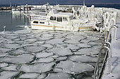 Ice at the port of Yvonand, on Lake Neuchâtel, during the episode of bise February 28, 2018. In late winter, the stormy wind rises and causes an episode of ice around the Lake Neuchâtel. The port of Yvonand and several boats are caught in the ice.
