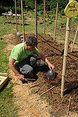 Lasagna - Install and grow lasagna in height. You can make your lasagna stand out by creating bamboo or chestnut racks. This makes it easier to work for both maintenance and harvesting.