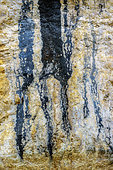 Bacterial varnish on a cliff in the Vercors. These deposits of manganese are related to the activity of bacterial complexes, associated with algae, along the wet flows of the cliffs. Rochers de Presles, Vercors Massif, Isère, France
