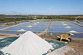 Salt marshes in full production, storage along the marsh, Guérande, Loire Atlantique, France