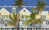 Typical house with palm trees, Key West, Florida, USA, North America