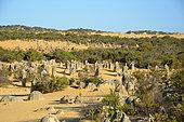 Pinnacles Desert, Nambung national park, WA, Australia