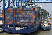 Container unloading, Container ship at quay, Westport, Port Kelang, Malaysia