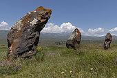 Monoliths in the steppe, Korats Karer Historical Reserve, Karahunj, Armenia.