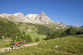 Vallée de La Clarée, hikers on the GR country of the Tour of Mont Thabor, in the background the massif of Cerces (3093m) and the peaks of the Main of Crépin (2942m), Névache, Hautes-Alpes, France