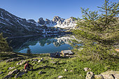 A seated hiker contemplates Lake Allos (2226 m), in the background the Tours du Lac, Haut-Verdon, Mercantour National Park, Alps, France