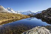 Reflection of Sirac (3441m) on Lake Lauzon (2008m), on the left the peak Jocelme (3458m), La Chapelle-en-Valgaudémar, Ecrins National Park, Hautes-Alpes, France