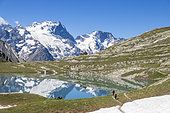 Hikers on the shore of Lake Goléon (2438m) in the massif of Oisans with in the background the Meije (3983m) and the Rake (3809m), Ecrins National Park, Hautes-Alpes, France